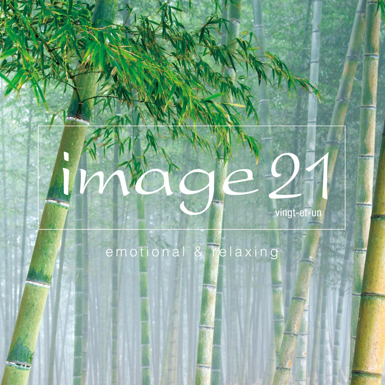 image21 vingt-et-un