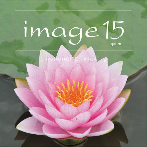 image 15 quinze